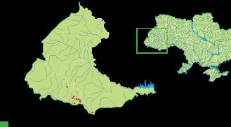 Campanula kladniana (Schur) Witasek