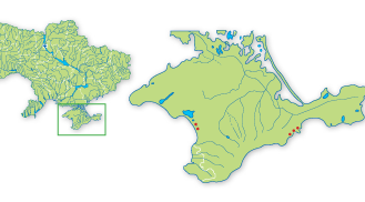 Astragalus similis Boriss.